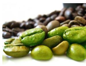 caffe-verde